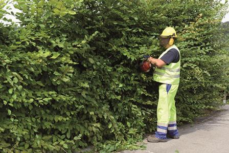 Entretien et aménagement espaces verts