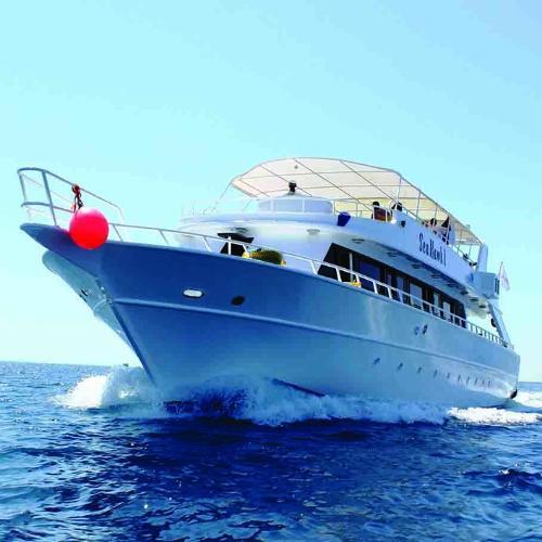 Boat Trip Red Sea, Egypt