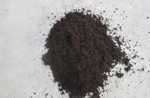 Black peat moss