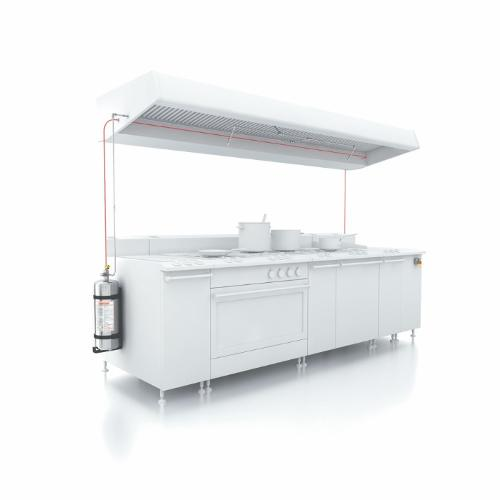 Fire extinguishing systems for kitchen equipment