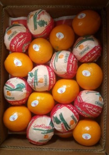 Египетский свежий пупок апельсин