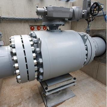 BORSIG Control ball valve