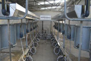 Herringbone  milking system