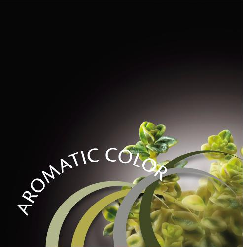 AROMATIC COLOR