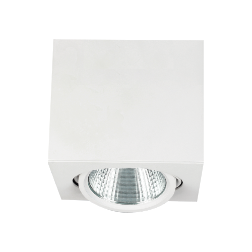 Surface Mounted COB LED Downlight