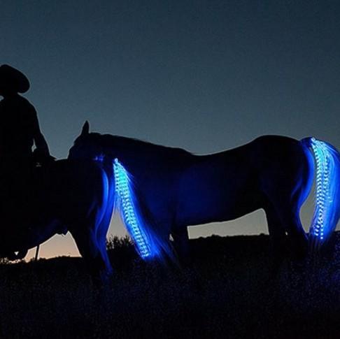 USB flashing led horse lighting tail