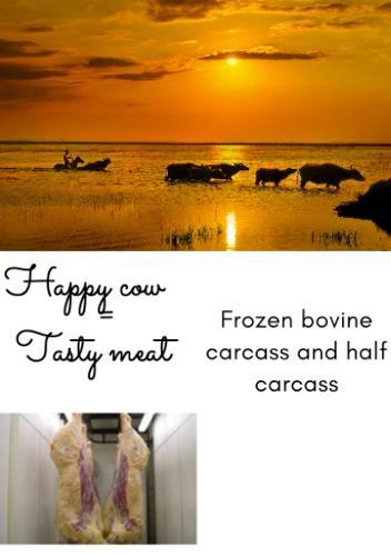 carcaça de  bovino congelada
