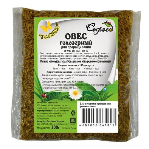 Oat Grains For Germination 300g