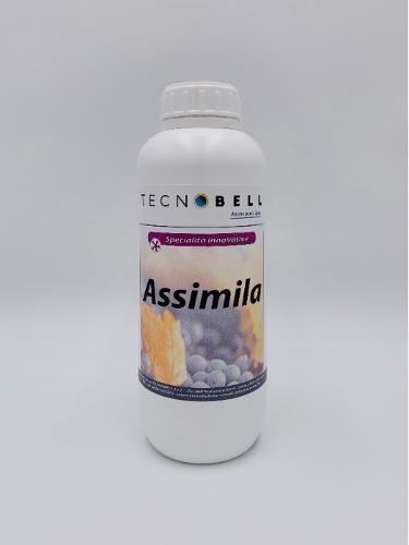 ASSIMILA