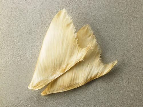 Dried Processed Sharkfin for sale