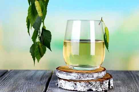 Производство полуфабрикатов березового сока