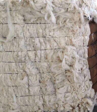 Scoured white wool