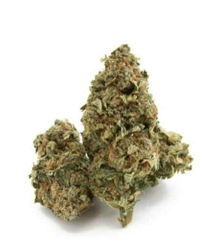 Cannatonics CBD Bud WHOLESALE ONLY FOR THIS PRODUCT!
