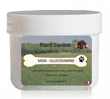 MSM Glucosamine Chien
