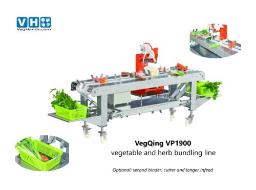 VegQing vegetable and herb processing line