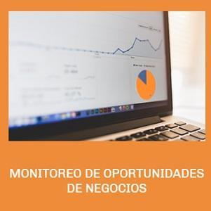 MONITOREO DE OPORTUNIDADES DE NEGOCIOS