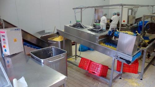 Usine de traitement de pommes de terre fraîches